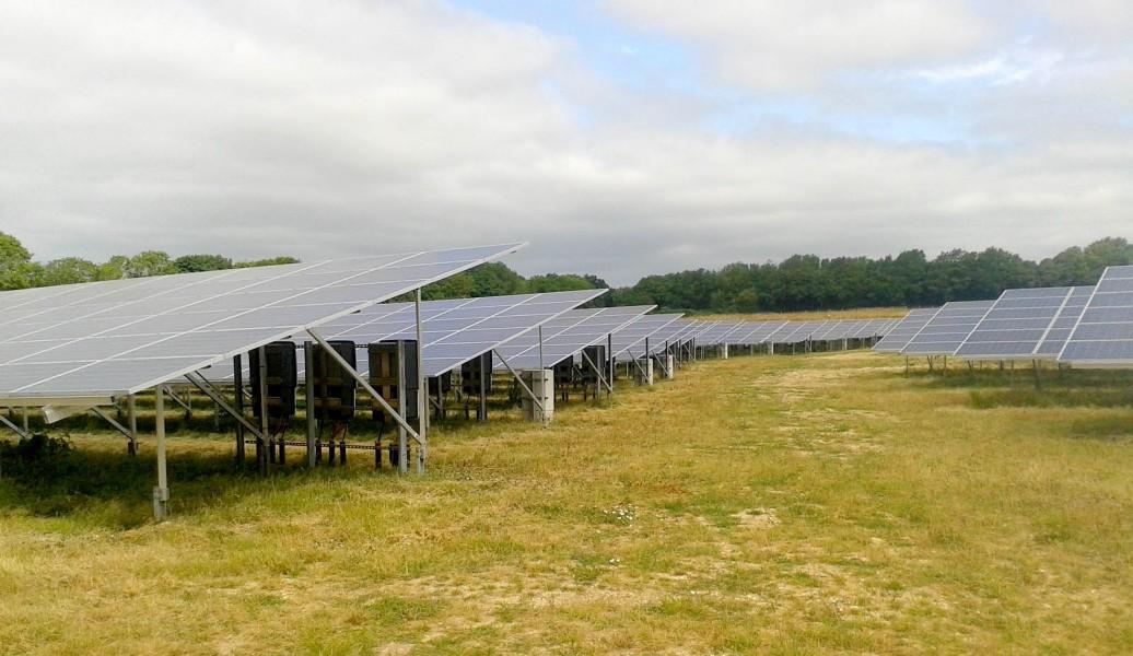 Green Solar World Cambridge Solar Farm Maintenance Services