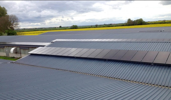 Solar panels providing electricity for a large farm in Cambridgeshire
